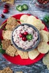 overhead view of cranberry salsa dip
