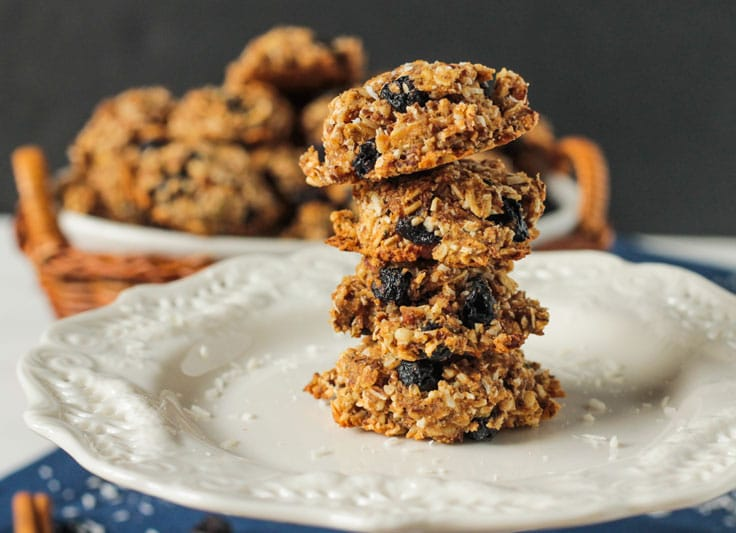 Blueberry Pecan Coconut Cookies