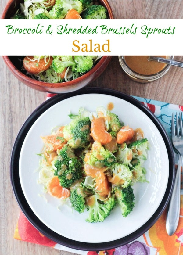 Broccoli & Shredded Brussel Sprout Salad - crunchy and tangy, this nearly raw salad makes a great light lunch or side dish. Perfect for your holiday table as well. #broccoli #brusselssprouts #vegan #glutenfree #raw #salad #thanksgiving #sidedish