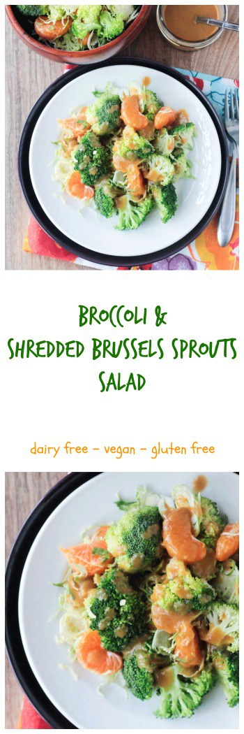 Broccoli & Shredded Brussel Sprout Salad - crunchy and tangy, this nearly raw salad makes a great light lunch or side dish. Perfect for your holiday table as well.