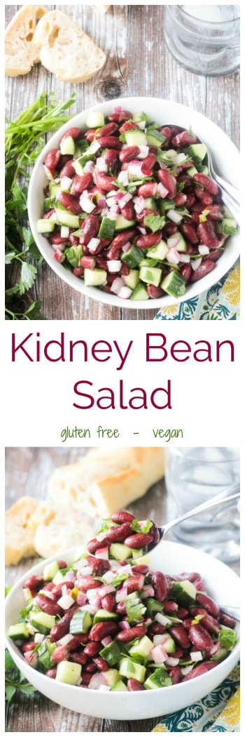 Kidney Bean Salad - This deliciously simple salad is perfect for a quick lunch, side dish for dinner, picnic in the park, or backyard BBQ. Easily doubled or tripled for a crowd. And it only gets better as it sits, so it's the perfect make-ahead dish. #vegan #glutenfree #kidneybeasn #plantprotein #quickandeasy #makeahead #salad #dairyfree