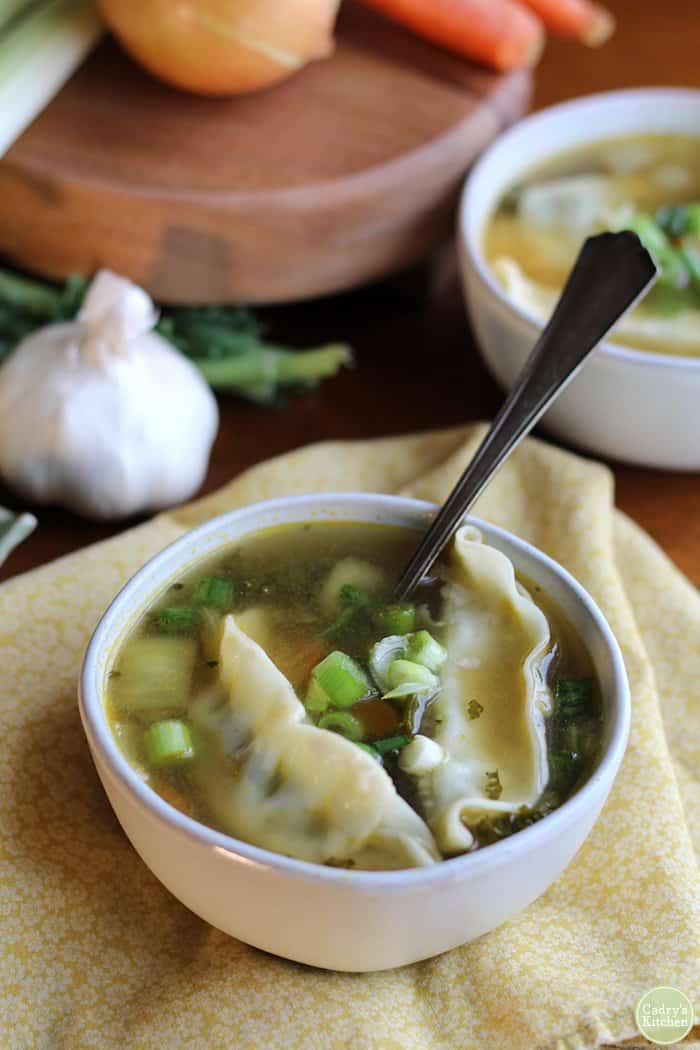 Soothing Potsticker Soup