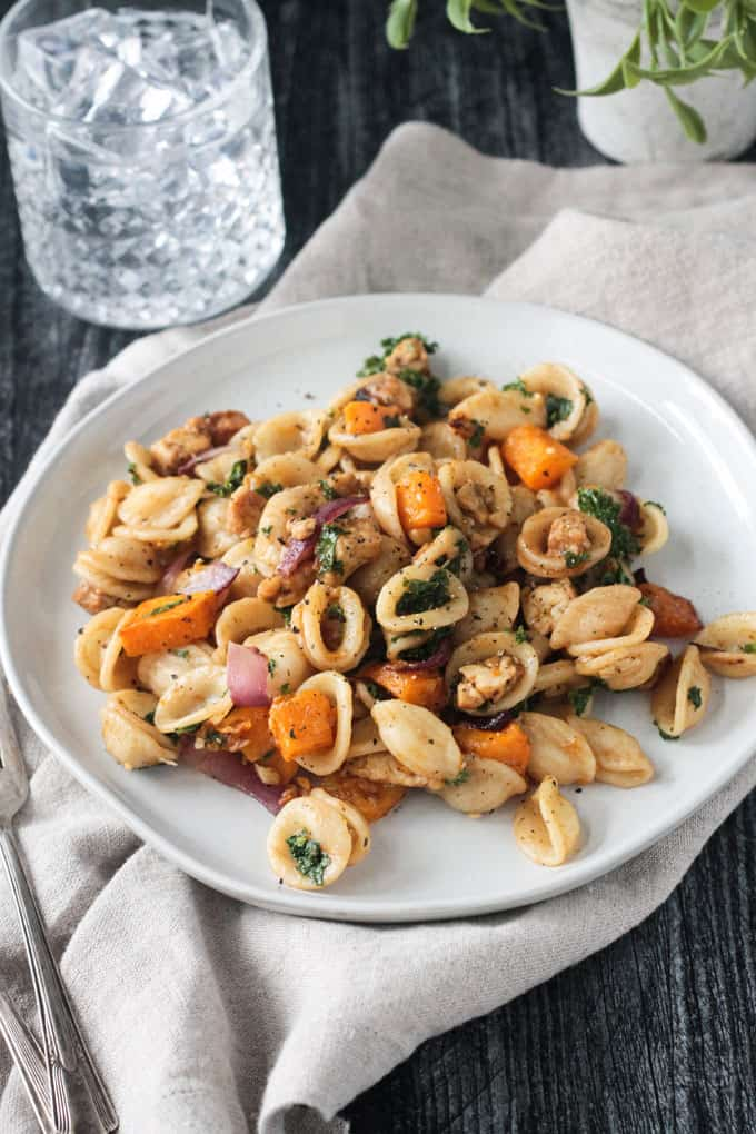 Orecchiette with roasted butternut squash and red onion, kale, and sautéed tempeh.