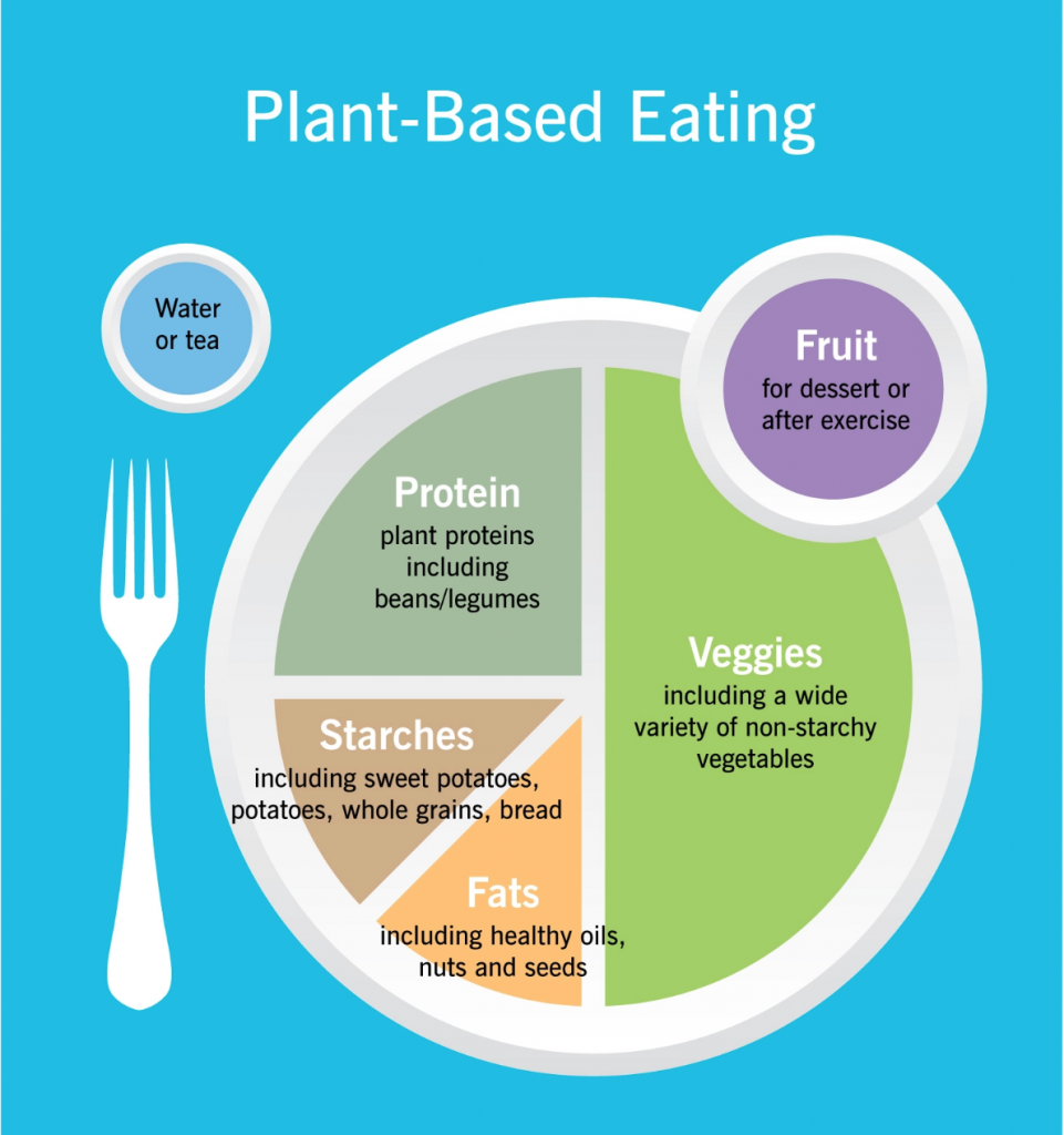 Infographic depicting a healthy plant based plate