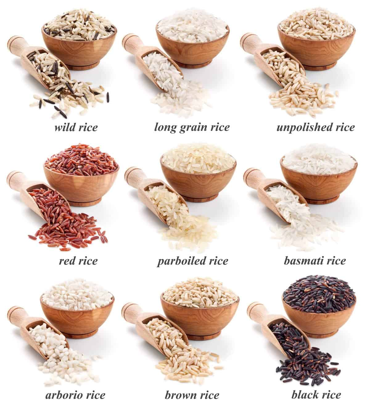 9 varieties of rice in individual bowls.