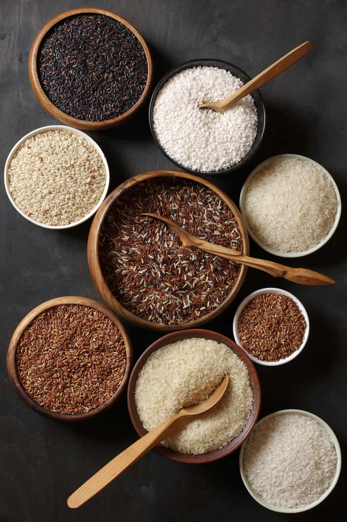 Rice varieties arrayed in individual bowls.